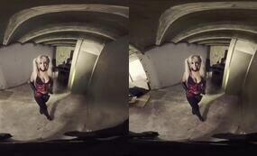 With Harley in the basement